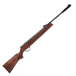 best air rifle