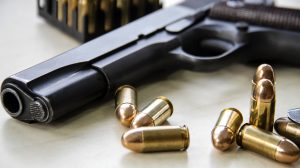 Gun Safe at home